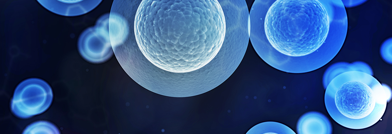 Investigator Explores Mitochondrial DNA Mutations